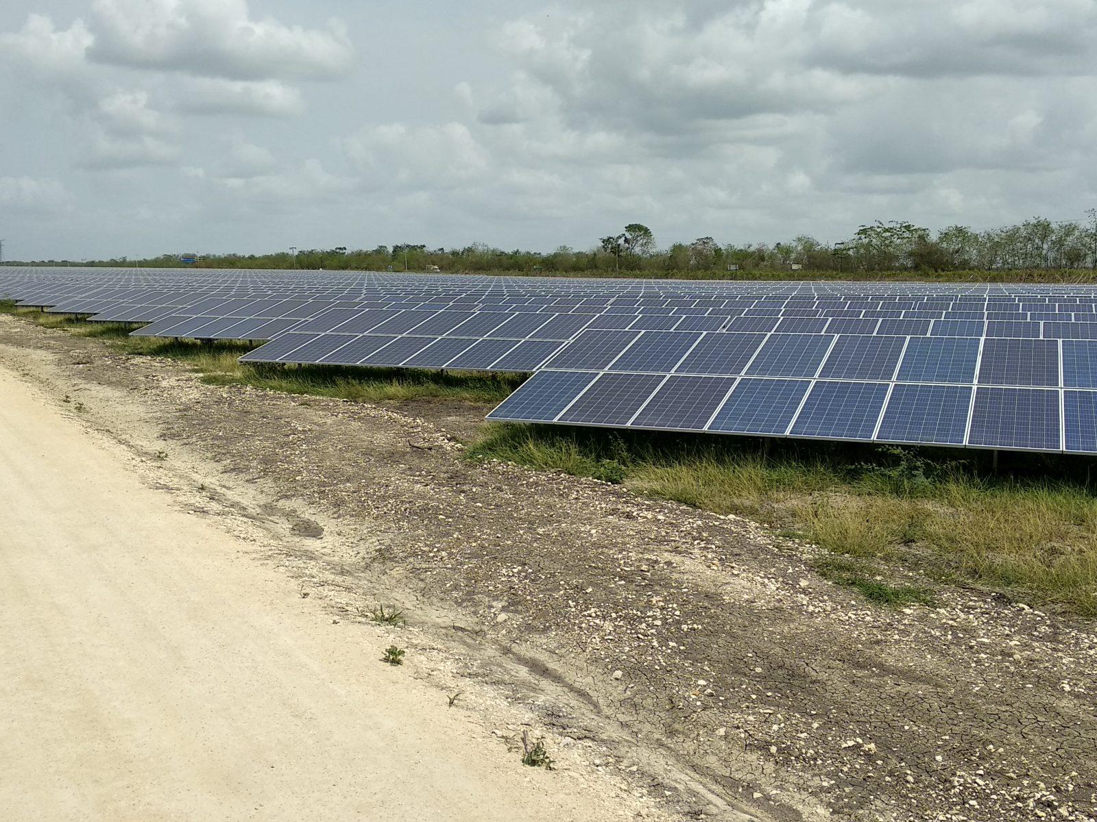 Mantenimiento huerto solar: 36 MWp (México)