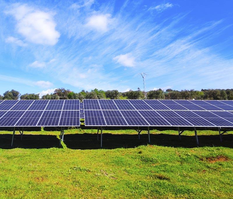 Alterna Energía construye la primera instalación de autoconsumo fotovoltaico para Montesano